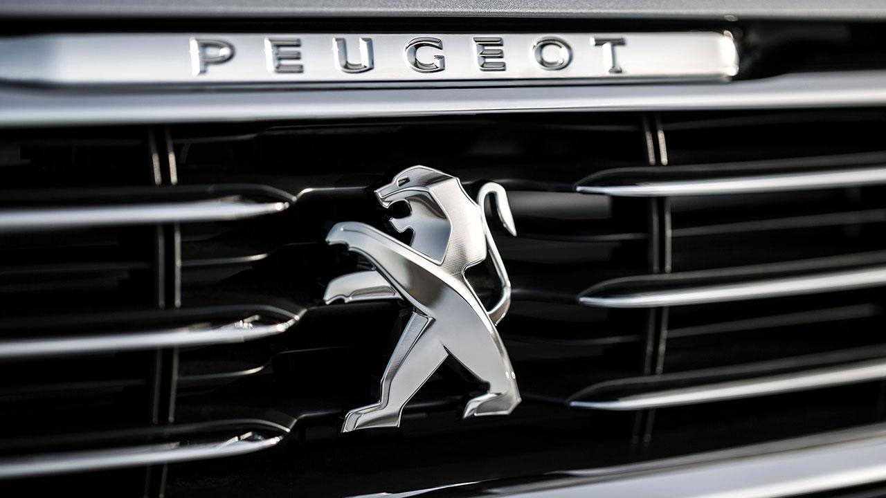 Peugeot 508 - Kühlergrill