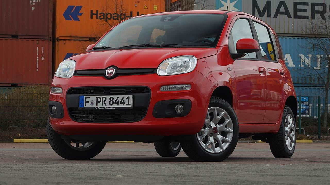 Fiat Panda - Frontansicht