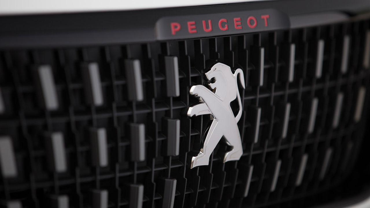 Peugeot 2008 - Kühlergrill