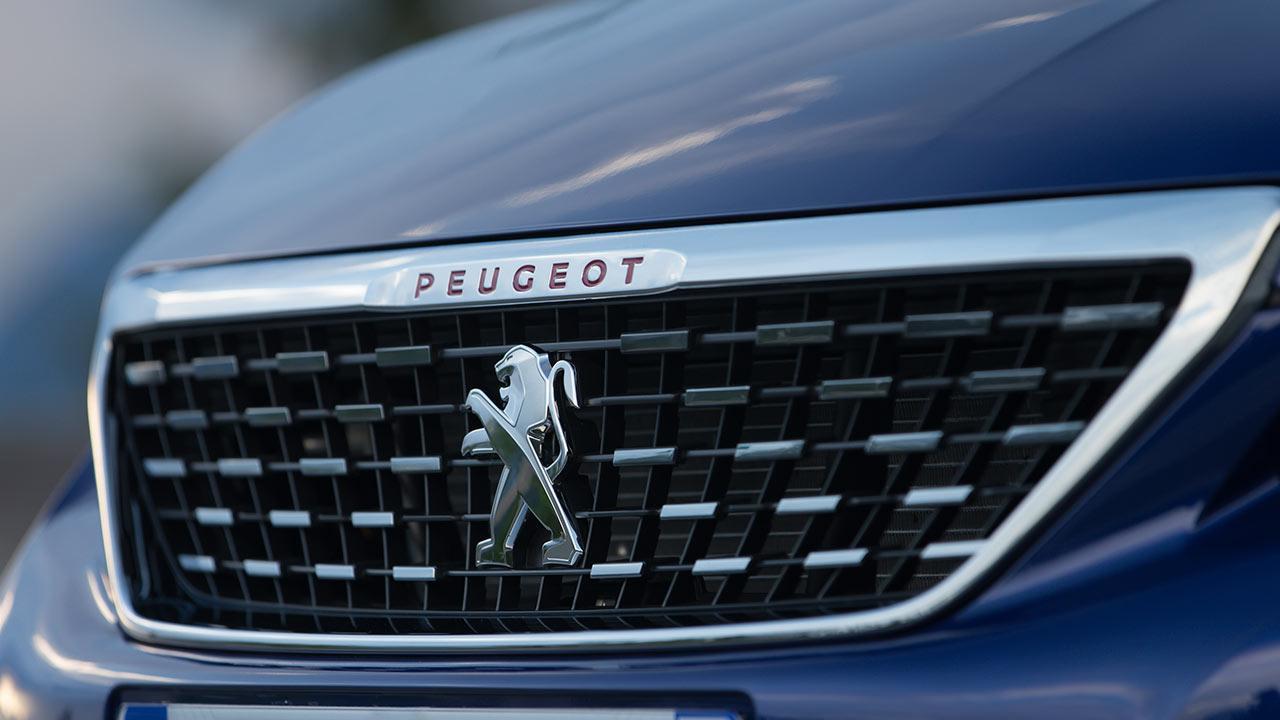 Peugeot 308 SW - Kühlergrill