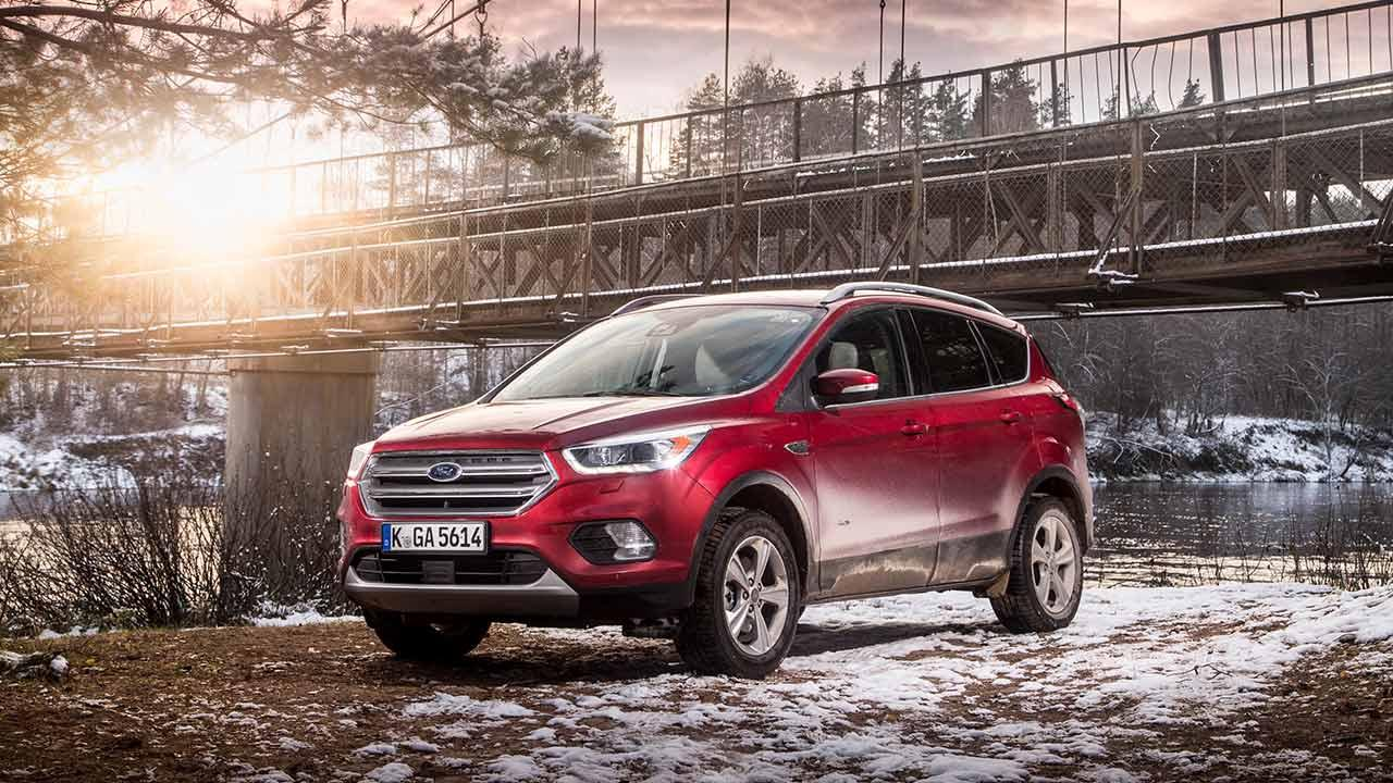 Ford Kuga - in der Wildniss